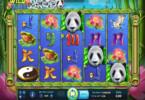 Ulasan Slot Wild Giant Panda